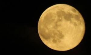 Super Moon photo courtesy of Segway Napa